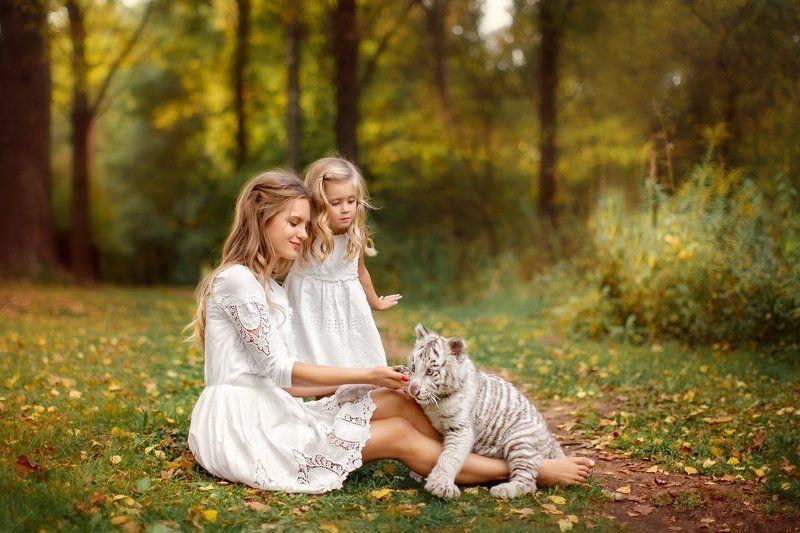 тигренок, мама, доча, семья, дочка, девочки, альбинос, блондинки Игры с тигренкомphoto preview