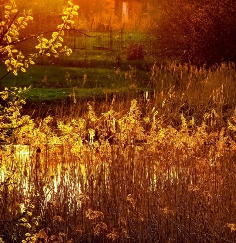 eddimar, пейзаж Расплавленная медь солнца... заливает вечер...photo preview