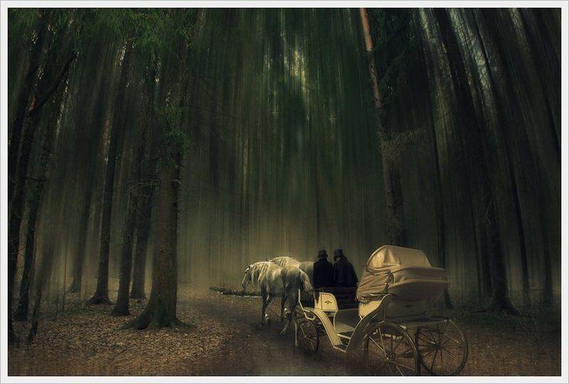 карета, лес, 2 дня, фотошоп, коллаж, цвет, лошадь 2 дняphoto preview