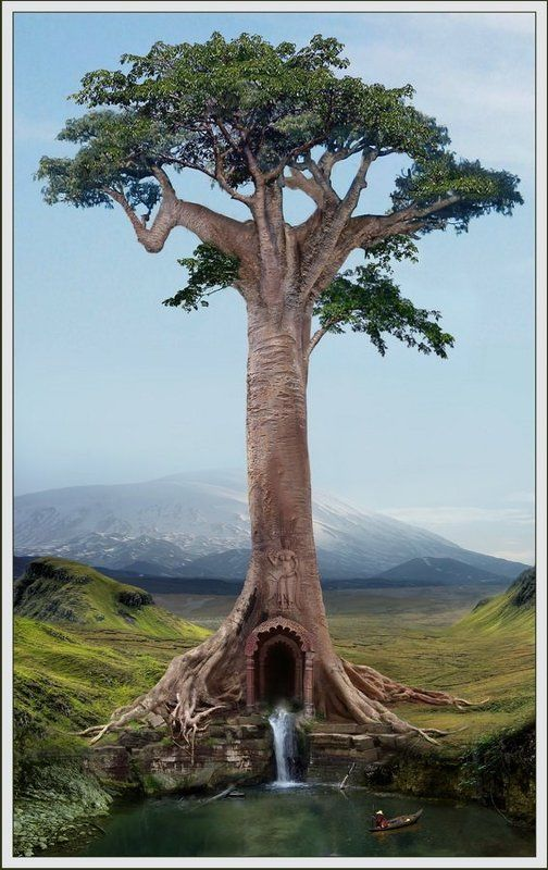 дерево, холмы, природа, лодка, рыбак, ручей, омут Древоphoto preview