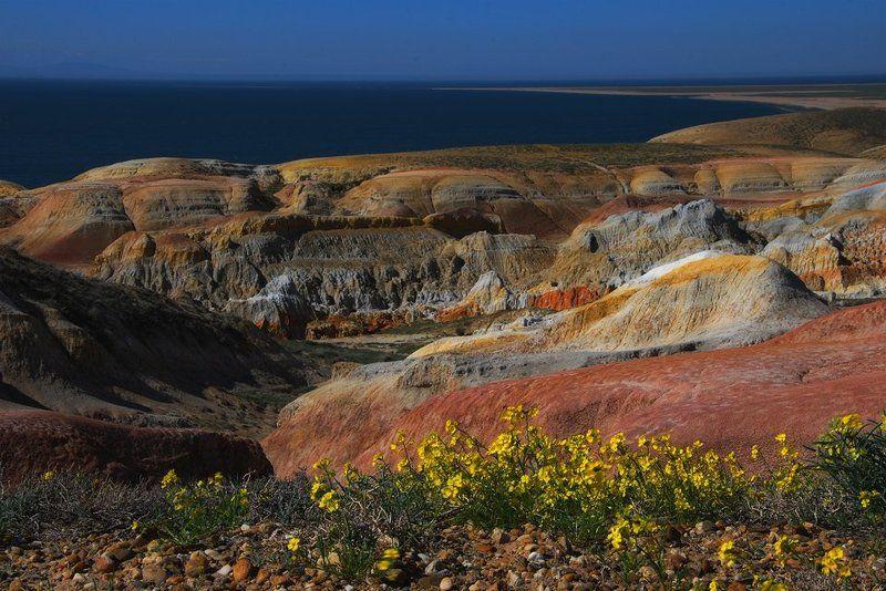 восточный, казахстан, весна Зайсанphoto preview