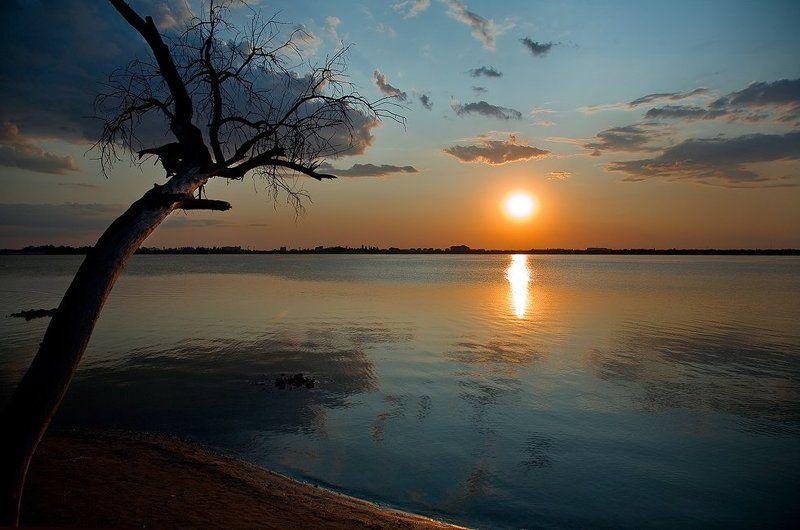 дерево, озеро, мойнаки, закат Одиночество...photo preview