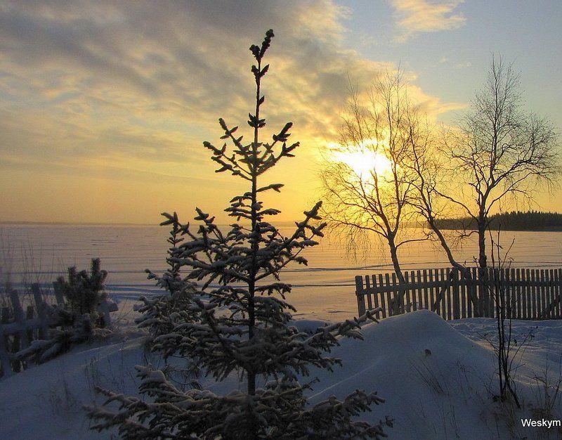 природа,пейзаж Природа зимой.photo preview