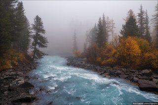 Туманное утро Кучерлы.