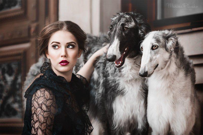 Борзые, Девушка, Портрет, Собака, Собаки Русские борзыеphoto preview