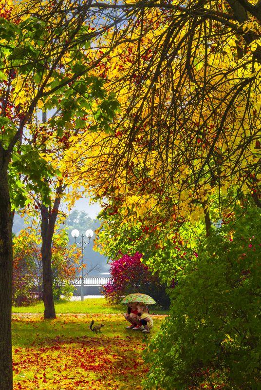 белка, брест, дети, листья, осень Пришла рыжая осень ) .photo preview