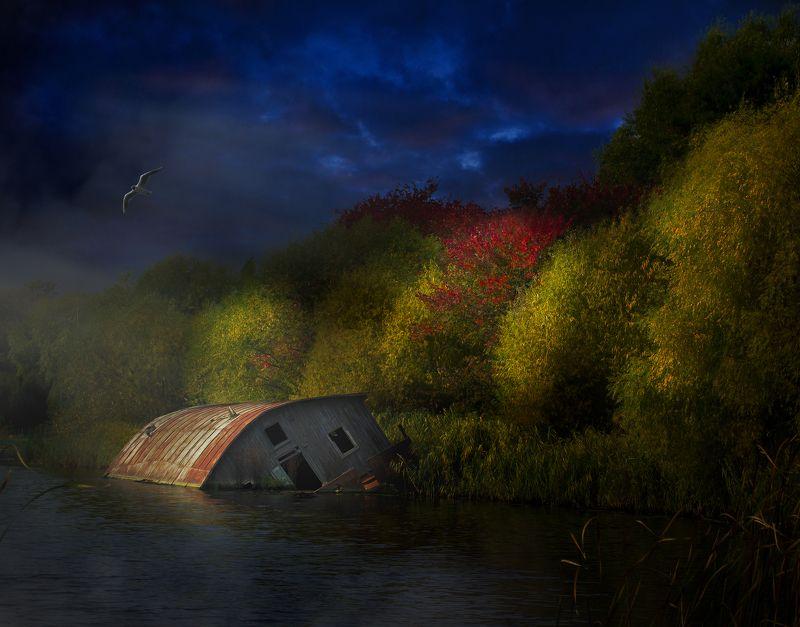 Ночь, Осень, Река, Чайка Забытые места.photo preview