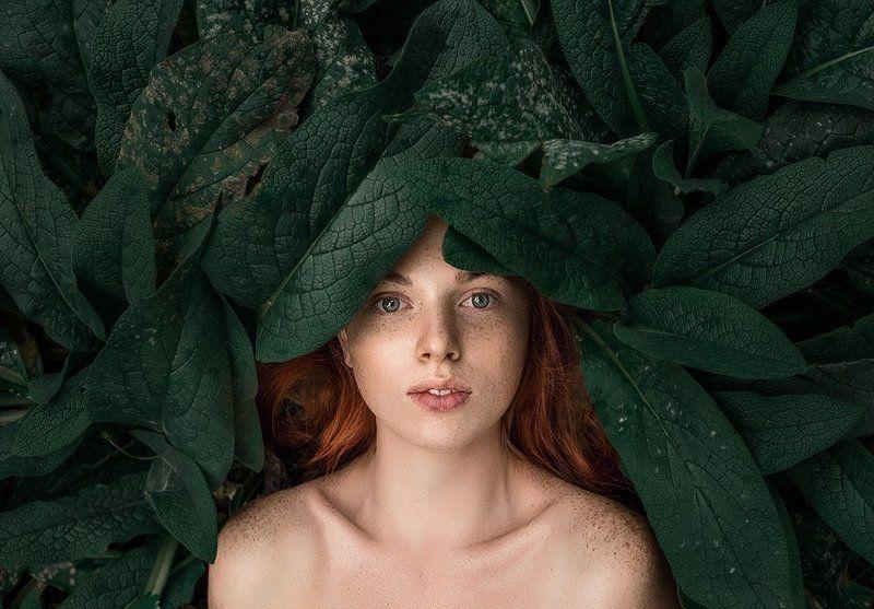 девушка портрет арт сказка лицо волосы глаза рыжая веснушки photo preview