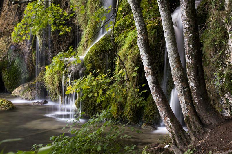 Waterworld Xphoto preview