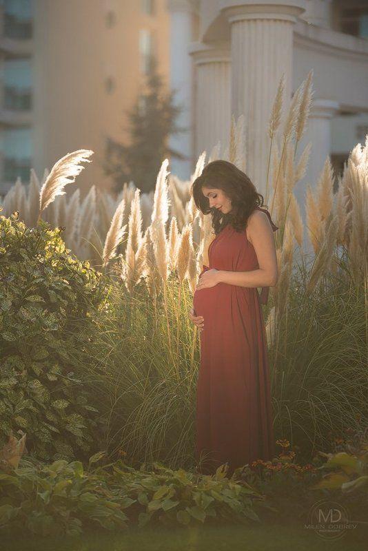 pregnant, беременная, beauty photo preview