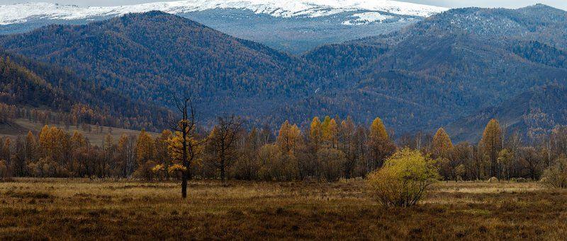 Алтай Дорогами Чуйского трактаphoto preview