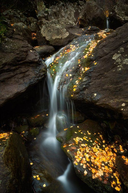 Гадельша, Башкирия, урал, уральскиегоры, осень, водопад, ручей, желтыелистья, камни photo preview
