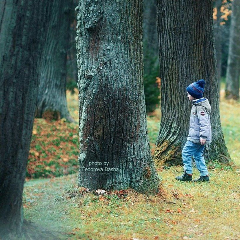 Лесной человечекphoto preview