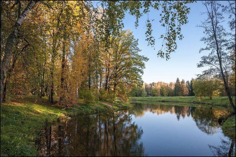 Павловск парк осень октябрь photo preview