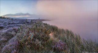 Рассвет, туман, изморозь...