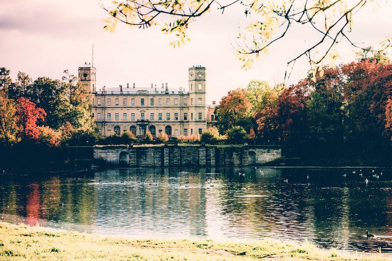 Осень в Гатчинеphoto preview