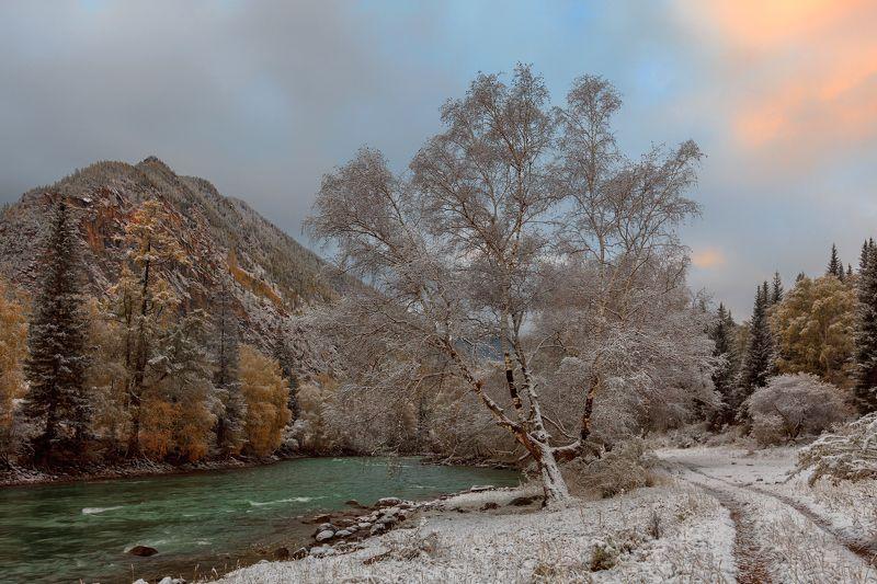 Холодное утро на реке Чуяphoto preview