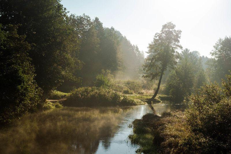 утро Viisjokiphoto preview