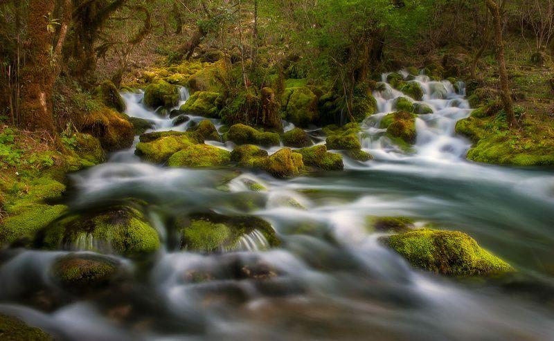 #nature, #landscaspe, #nikon, #national, parck, #spring, #instagram Spring of mindsphoto preview