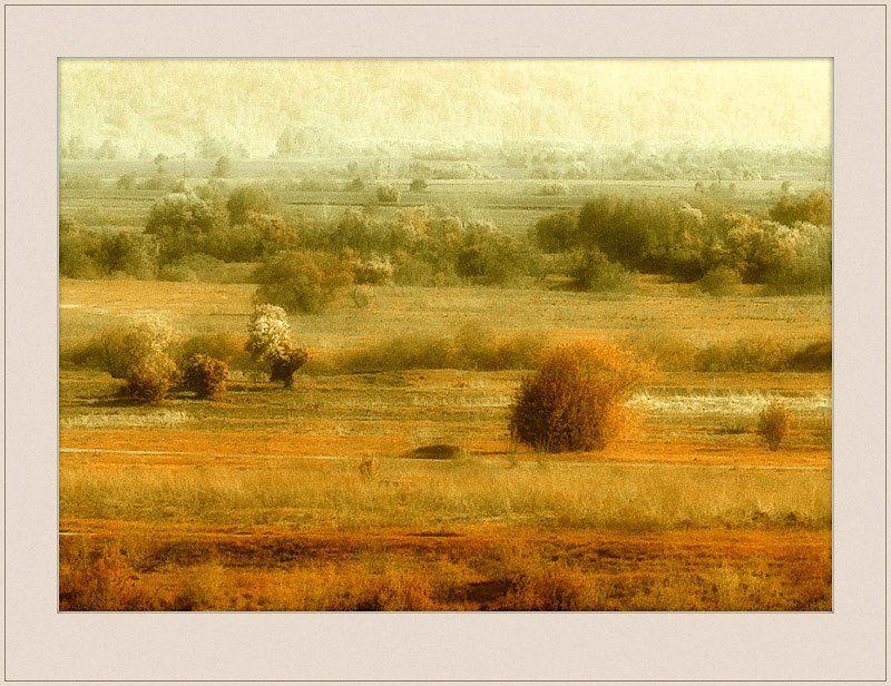 природа, томская, область Ржавое настроение...photo preview
