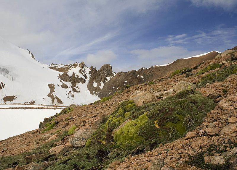 казахстан, заилийский, алатау, природа, горы будков дмирий ***photo preview