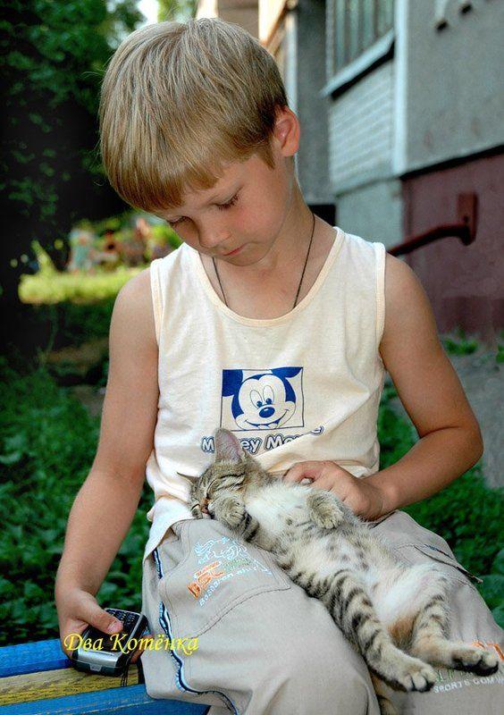 мальчик, котёнок, абсолютное доверие ДВА КОТЁНКАphoto preview