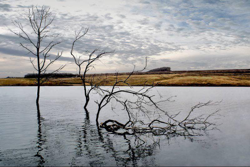 непрощенный ведьмино озеро Непрощенныйphoto preview