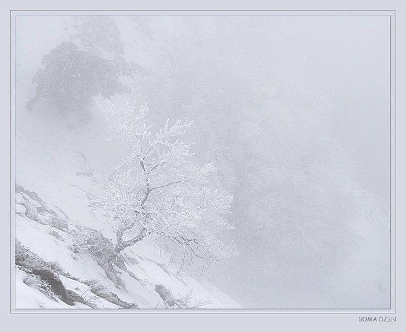 снег На карю сознанияphoto preview