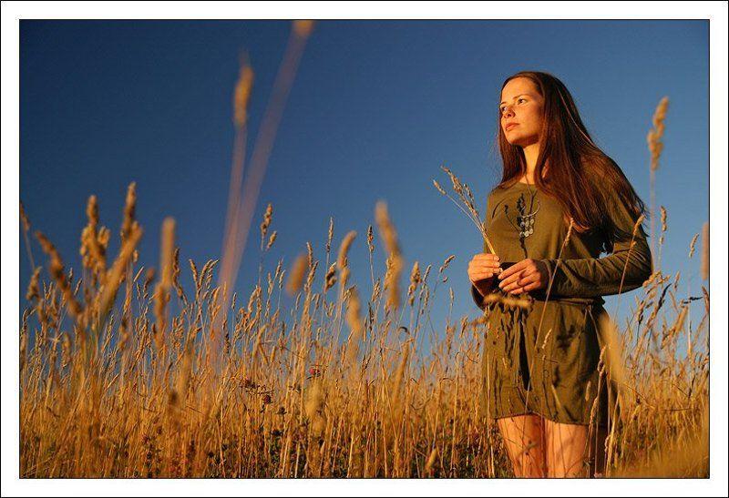катю, портрет, девушка,закат, поле, лето Навстречу солнцу...photo preview