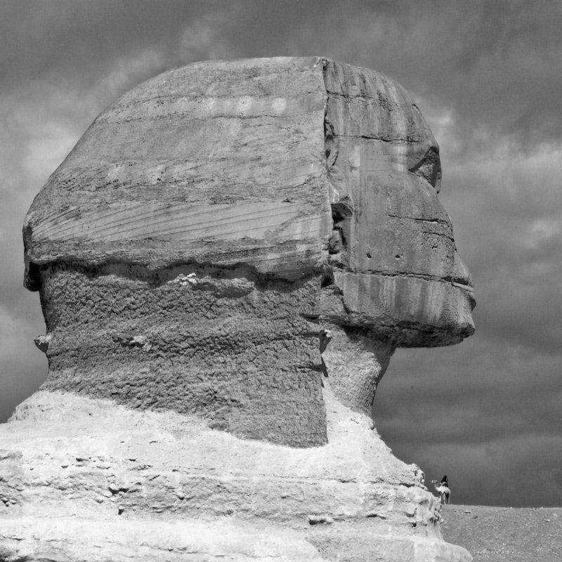 египет, сфинкс, верблюд большой и маленькийphoto preview