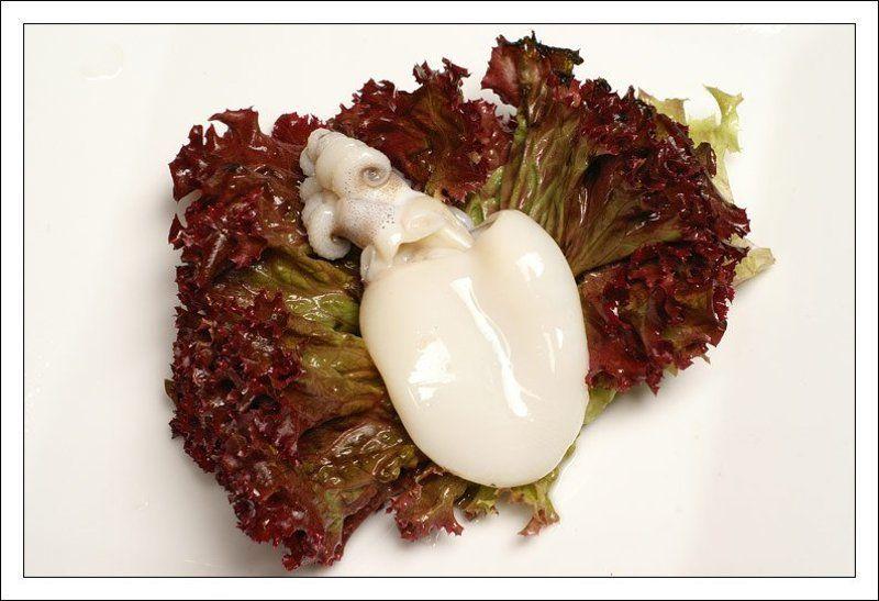 каракатица,морепродукт,натюрморт,салат,лед Каракатица на листе салатаphoto preview