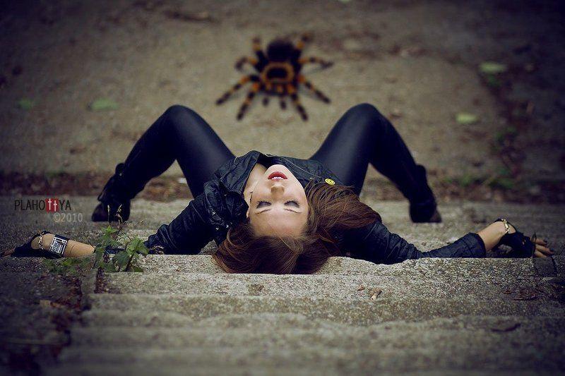 Павелительница пауковphoto preview