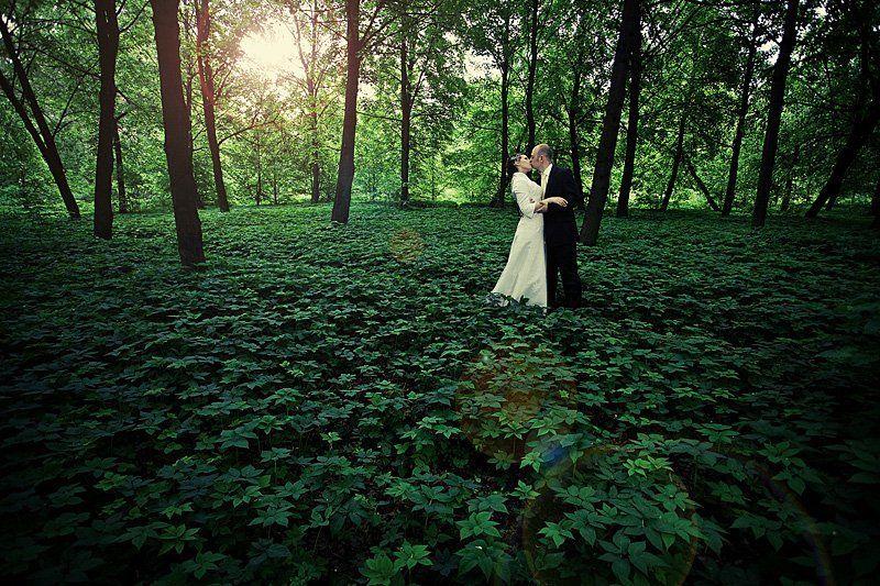 лес, ковер, молодые Наединеphoto preview