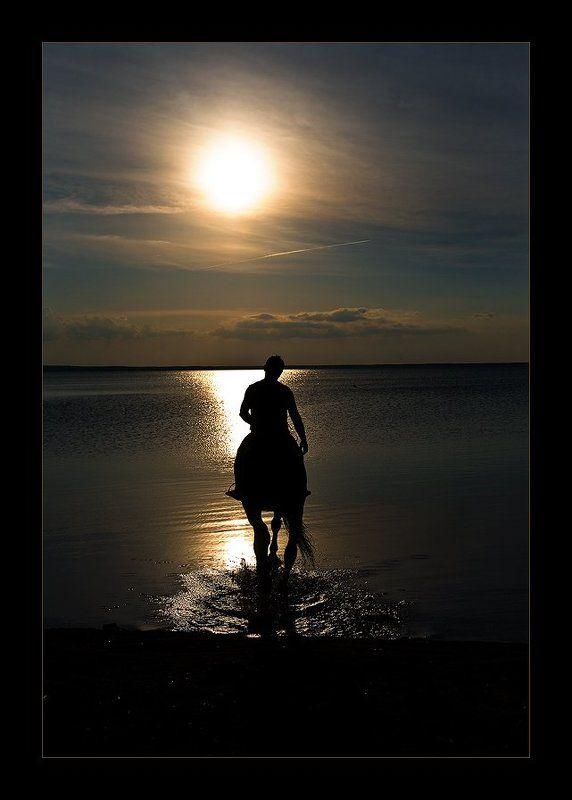 озеро, лошадь, закат Уходя в закат...photo preview