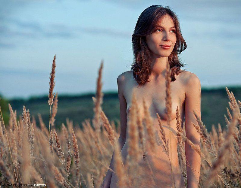 девушка,закат,поле закатphoto preview