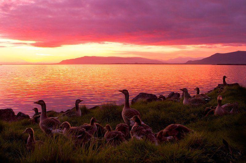 Закат в Исландииphoto preview