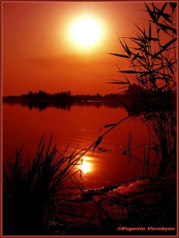 речка, восход Утроphoto preview