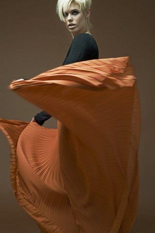 fashion, max_mara *photo preview