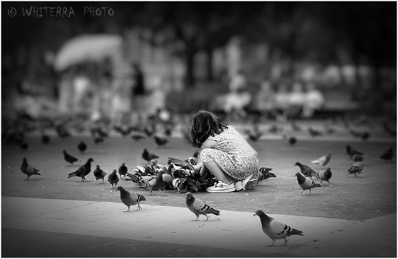девочка, голуби, барселона Девочка и голубиphoto preview