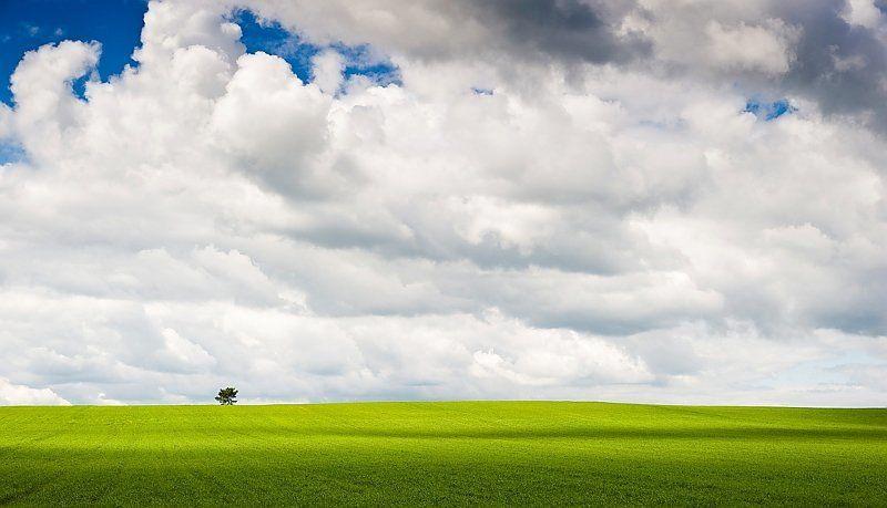 земля, трава, поле, облака, небо, дерево, одинокий, тени Земля и небоphoto preview