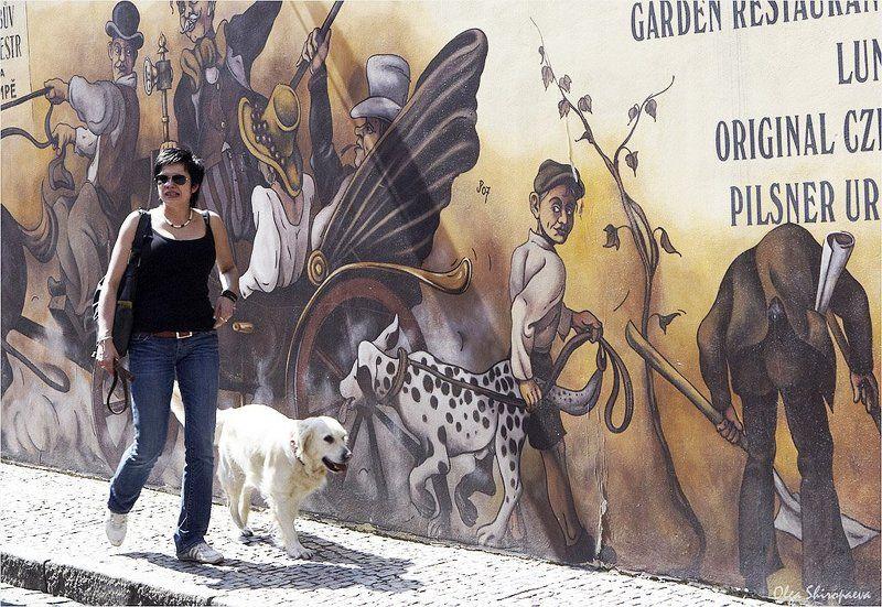 прага, собака, лето, встреча Встреча.photo preview