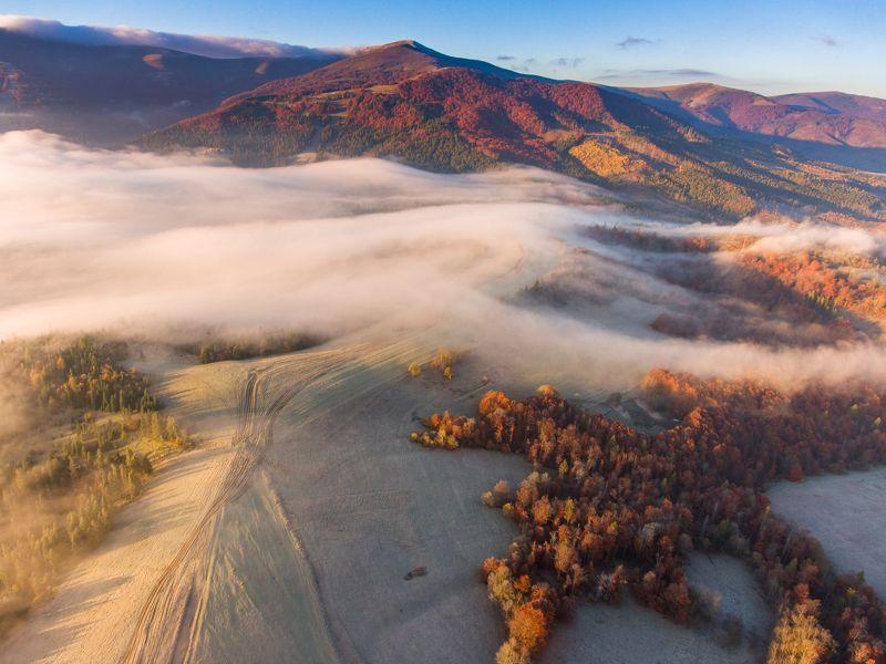 Осень. Карпаты. Туманыphoto preview