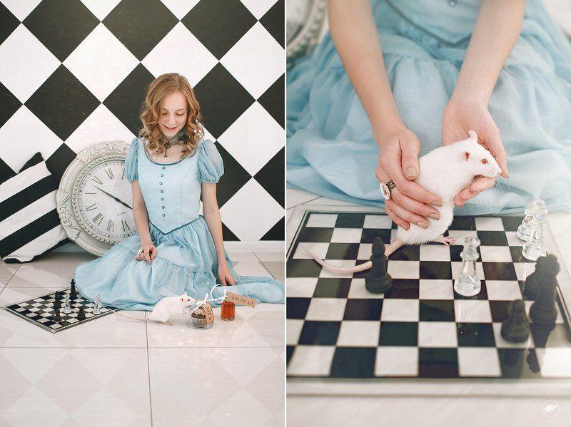 Алиса, девушка, белая мышь, шахматы, сказка Alicephoto preview