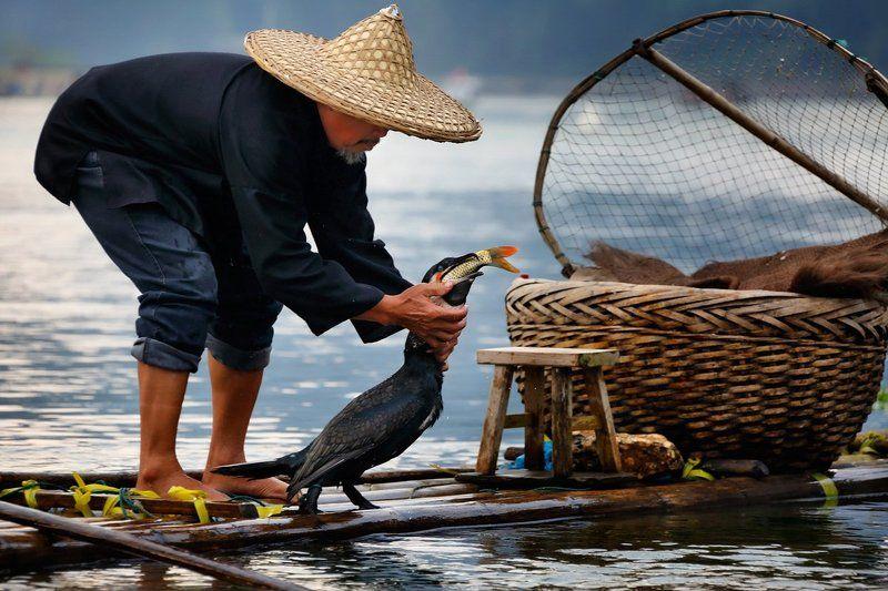 китай, рыбалка, река ли Отдай рыбкуphoto preview