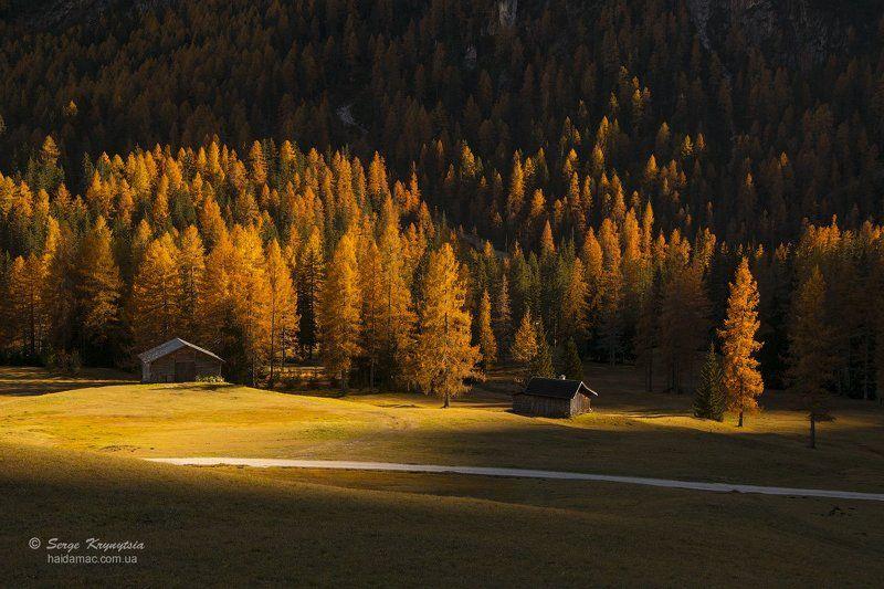 autumn, dolomites, fall, yellow, sunlit, light, italy, mountains, valley Autumn lightphoto preview