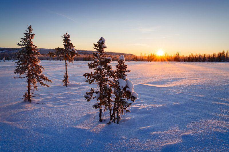 пейзаж, зима Зимнее утро на севереphoto preview