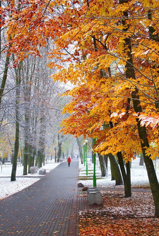 Брест, Осень зима, Парк, Снег Когда осень встречается с зимой.photo preview