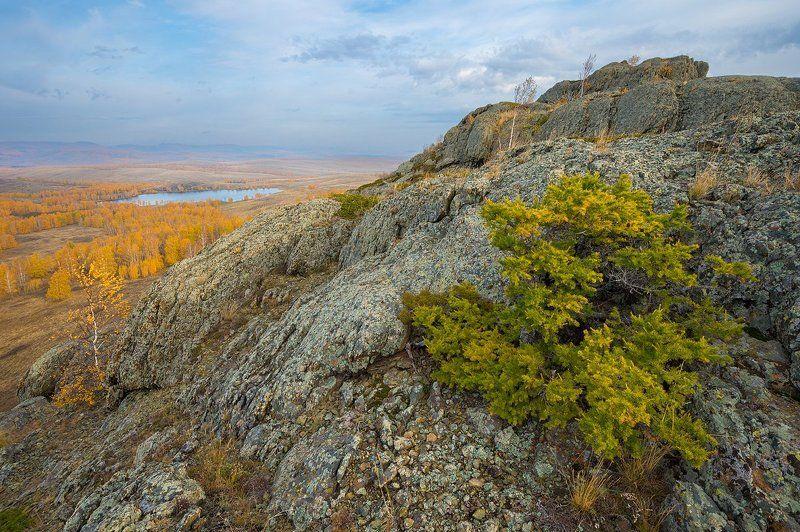 урал, башкирия, сарыкуль, траташ, лиственница, горы, осень, березы photo preview