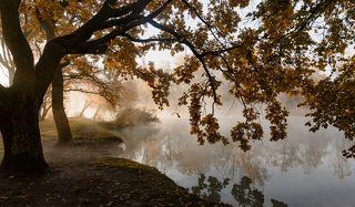 Утро пейзажного фотографа
