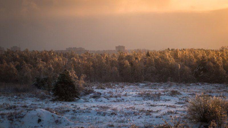 Lumix, Зима, Природа, Снег, Солнце, Фото Дубна Луч солнца золотого.photo preview